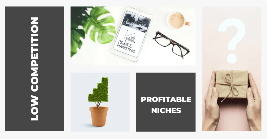 Top 10 Profitable Niches With Low Competition 2020