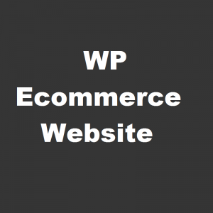 WP Ecommerce Website